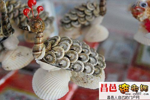 贝壳手工艺品图片